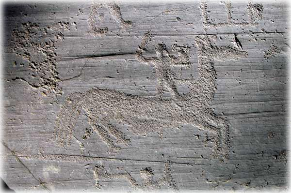 Rock art: warrior standing on the back of the horse from rock n. 50 di Naquane (Capo di Ponte, Valcamonica)