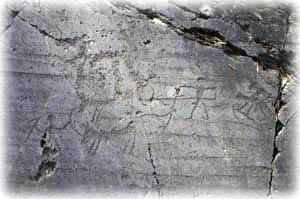 Rock art: plughing scene at Seradina, Archaeological Park of Seradina-Bedolina, Capo di Ponte (Valcamonica)
